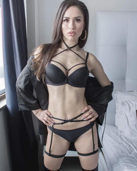 kim // harness
